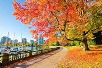 Dịch vụ visa VIP – Công ty tư vấn visa du lịch, thăm thân Canada uy tín